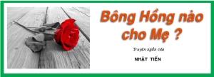 BONG HONG NAO CHO ME-05062013