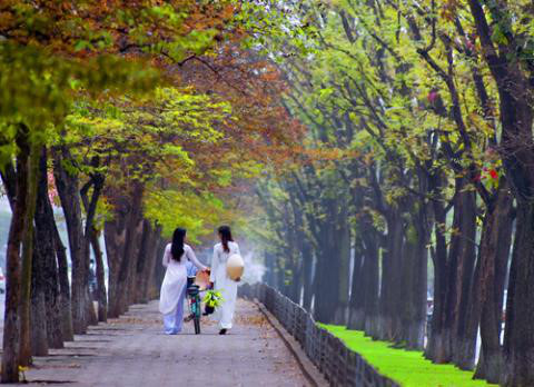 Những con đường Việt Nam